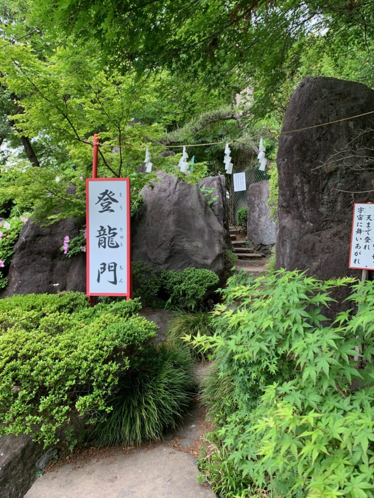 渋川八幡宮3