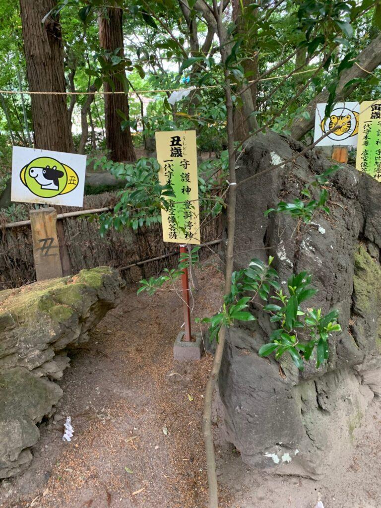 渋川八幡宮6