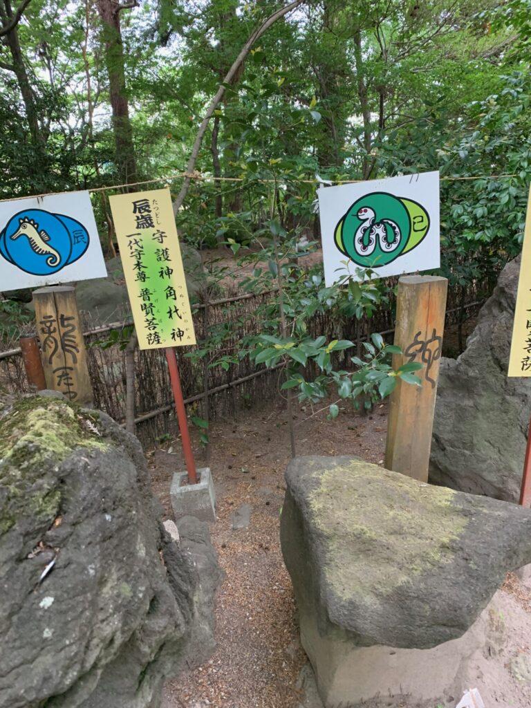 渋川八幡宮9
