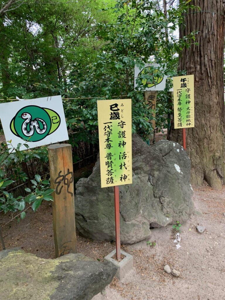 渋川八幡宮10